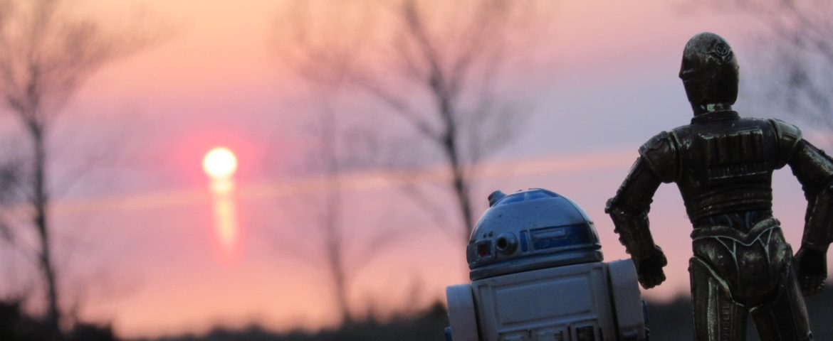 """Star Wars, Camping & the Month of May – """"Do It Because of the Trees"""""""